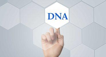 Nuovi test genetici di nutrizione